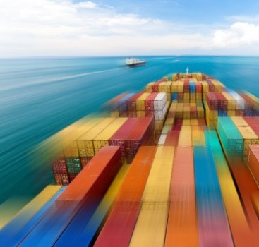 Sea Freight Customs Clearance & Forwarding Services